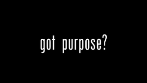 Got Purpose?
